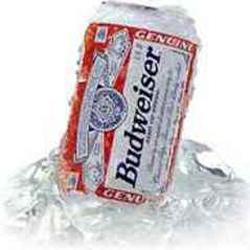 budweiser beer calories